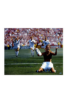 Steiner Sports Brandi Chastain Signed PK Celebration Photo