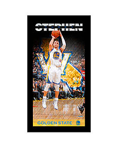 Steiner Sports Stephen Curry Golden State Warriors Player Profile 9.5x19 Framed Photo