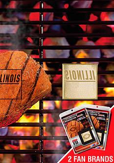 Fanmats NCAA Illinois Fighting Illini Grilling Fan Brand 2-Pack