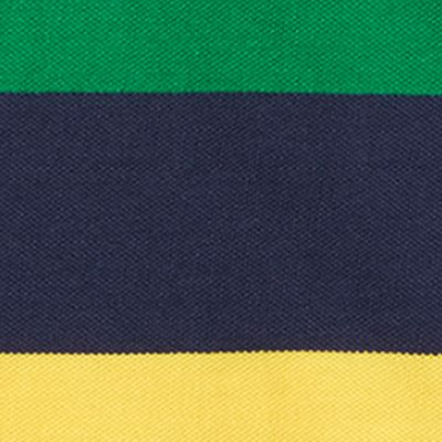 Ralph Lauren Boys: Green Multi Ralph Lauren Childrenswear Mesh Stripe Polo - Toddler Boy
