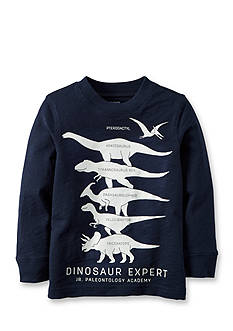 Carter's® Dinosaur Expert Graphic Tee Toddler Boys