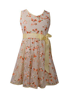 Bonnie Jean Butterfly Embroidered Mesh Dress Girls 7-16 Plus