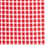 Boys Dress Clothes: Red Polo Ralph Lauren Poplin Shirt Boys 8-20