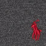 Boys Polo Shirts: Dark Gray Heather Ralph Lauren Childrenswear Mesh Long Sleeve Polo Boys 8-20