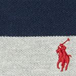 Boys Polo Shirts: Heather Multi Polo Ralph Lauren Stripe Polo Boys 8-20