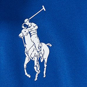 Boys Polo Shirts: Sapphire Star Ralph Lauren Childrenswear Tech Mesh Pieced Polo Boys 8-20
