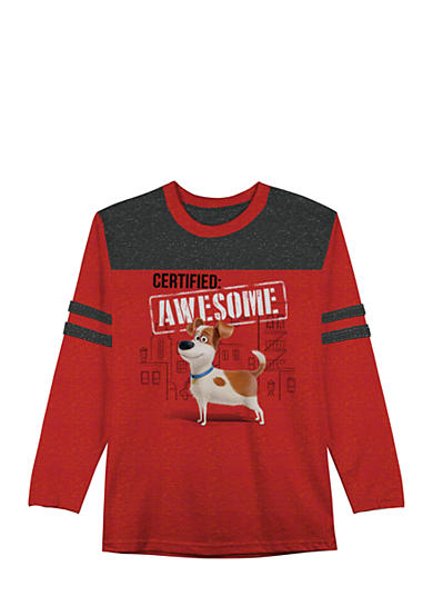 Hybrid™ The Secret Life of Pets 'Awesome' Tee Boys 4-7