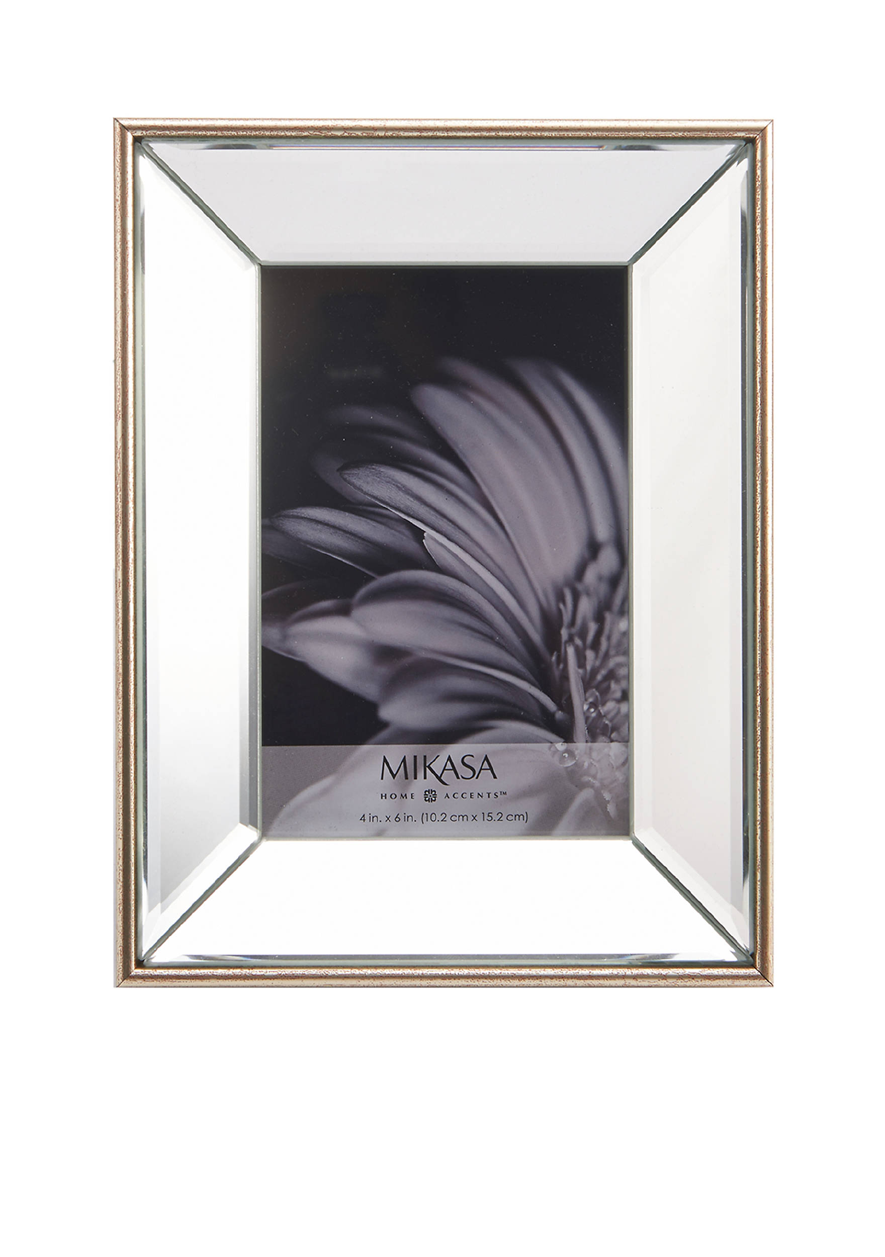 images champagne plastic mirror frame - Mikasa Picture Frames