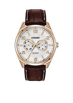 Citizen Eco-Drive Men's Strap Watch