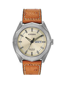 Citizen Eco-Drive Titanium Watch