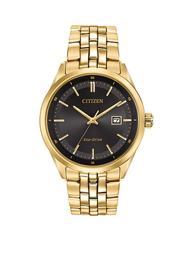Citizen Eco-Drive Paris Watch