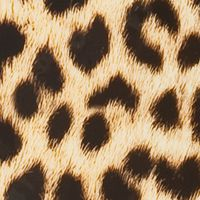 Rockland Bed & Bath Live In Color: Leopard Rockland 20-in. Polycarbonate/ABS Carry On Luggage