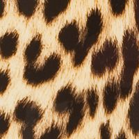 Lightweight Luggage Sale: Pink Leopard Rockland 20-in. Polycarbonate/ABS Carry On Luggage