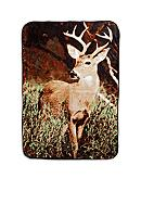 Shavel Deer Hi-Pile Throw