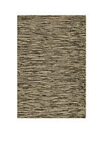 Mesa Static Natural Area Rug 2' x 3'