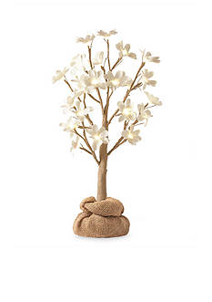 Order™ Home Collection 2-ft. Magnolia Tree