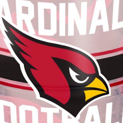 For The Home: Tervis Sports Fan: Arizona    Cardinals Tervis 24-oz. NFL Gridiron Tumbler