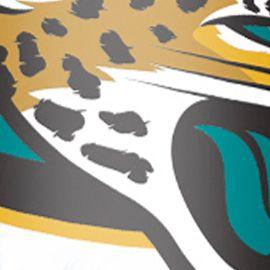 Red Drinkware Sets: Jacksonville Jaguars Tervis NFL 6-oz. Sippy Wrapy