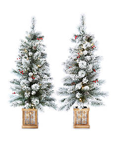 Biltmore Set of 2 4-ft. Pre-Lit Flocked Porch Trees