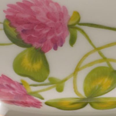 For The Home: Herend: Pink Herend American Wildflowers Tea Cup