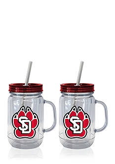 Boelter 20-oz. NCAA South Dakota Coyotes 2-pack Straw Tumbler with Handle