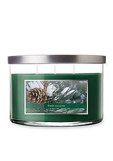 Colonial Candle 15-oz. 3-Wick Fresh Cut Pine Candle