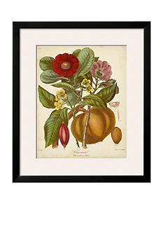 Art.com Twining Botanicals I by Elizabeth Twining, Framed Art Print