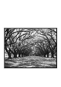 Art.com Arched Path of Trees on Plantation Site by Philip Gendreau Mounted Photo