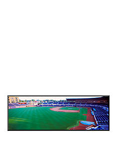 Art.com Baseball Stadium in a City, Durham Bulls Athletic Park, Mounted Photo