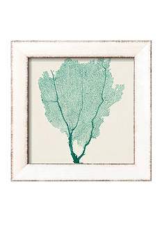 Art.com Sea Fan I by Vision Studio, Framed Art Print