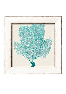 Art.com Sea Fan III by Vision Studio, Framed Art Print