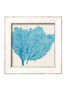 Art.com Sea Fan IV by Vision Studio, Framed Art Print