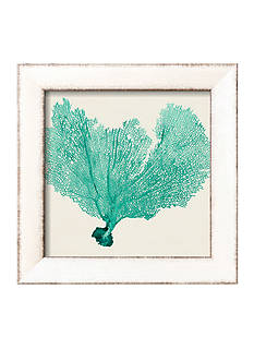 Art.com Sea Fan VI by Vision Studio, Framed Art Print