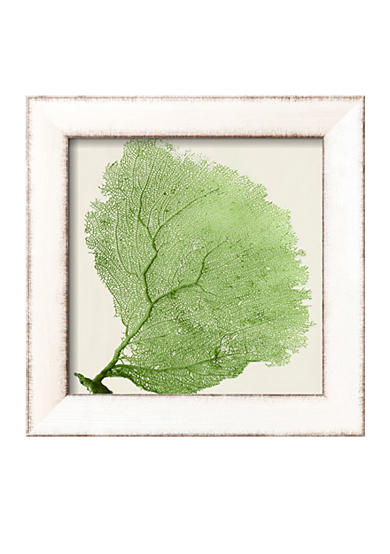 Art.com Sea Fan IX Framed Art Print