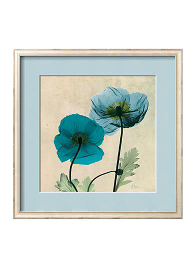 Art.com Iceland Poppy by Albert Koetsier Framed Art Print