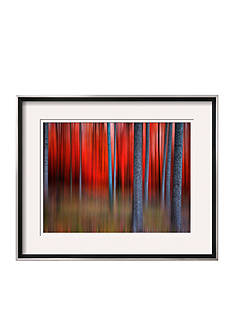 Art.com Gimick by Philippe Sainte-Laudy, Framed Photographic Print