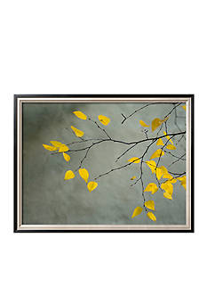Art.com Yellow Autumnal Birch (Betula) Tree Limbs Against Gray Stucco Wall by Daniel Root, Framed Photographic Print