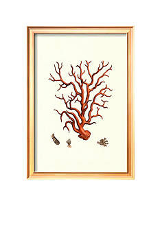 Art.com Red Coral I Framed Art Print