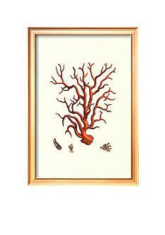 Art.com Red Coral I Framed Art Print