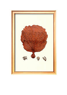 Art.com Red Coral II Framed Art Print
