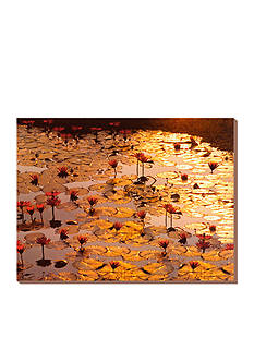 Art.com Lotus Pond Stretched Canvas Print
