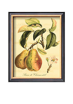 Art.com Petite Tuscan Fruits IV, Framed Art Print, - Online Only