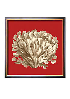 Art.com Coral on Red III, Framed Art Print