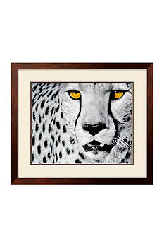 Art.com White Cheetah by Rocco Sette, Framed Art
