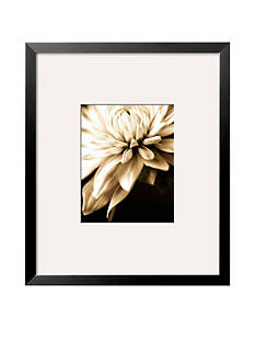 Art.com Radiance IV, Framed Art Print
