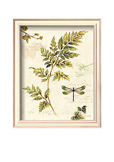 Art.com Ivies and Ferns III, Framed Art Print