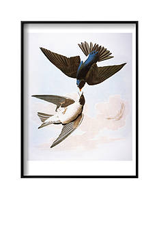 Art.com Audubon: Swallows, 1827-38 by John James Audubon, Framed Art Print