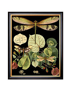 Art.com Whimsical Dragonfly on Black II Framed Giclee Print Online Only