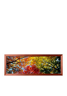 Art.com Colorful Trees in Fall, Autumn, Low Angle View Framed Photographic Print
