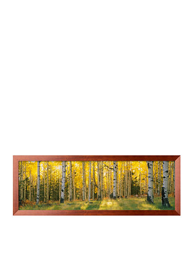 Art.com Aspen Trees in Coconino National Forest, Arizona, USA Framed Photographic Print